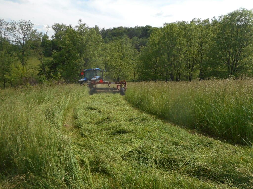 Roller in cover crop field