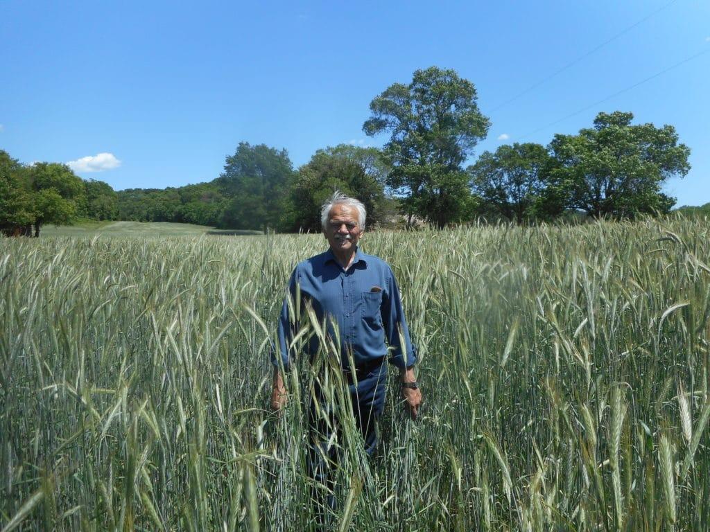 Gary Zimmer standing in field