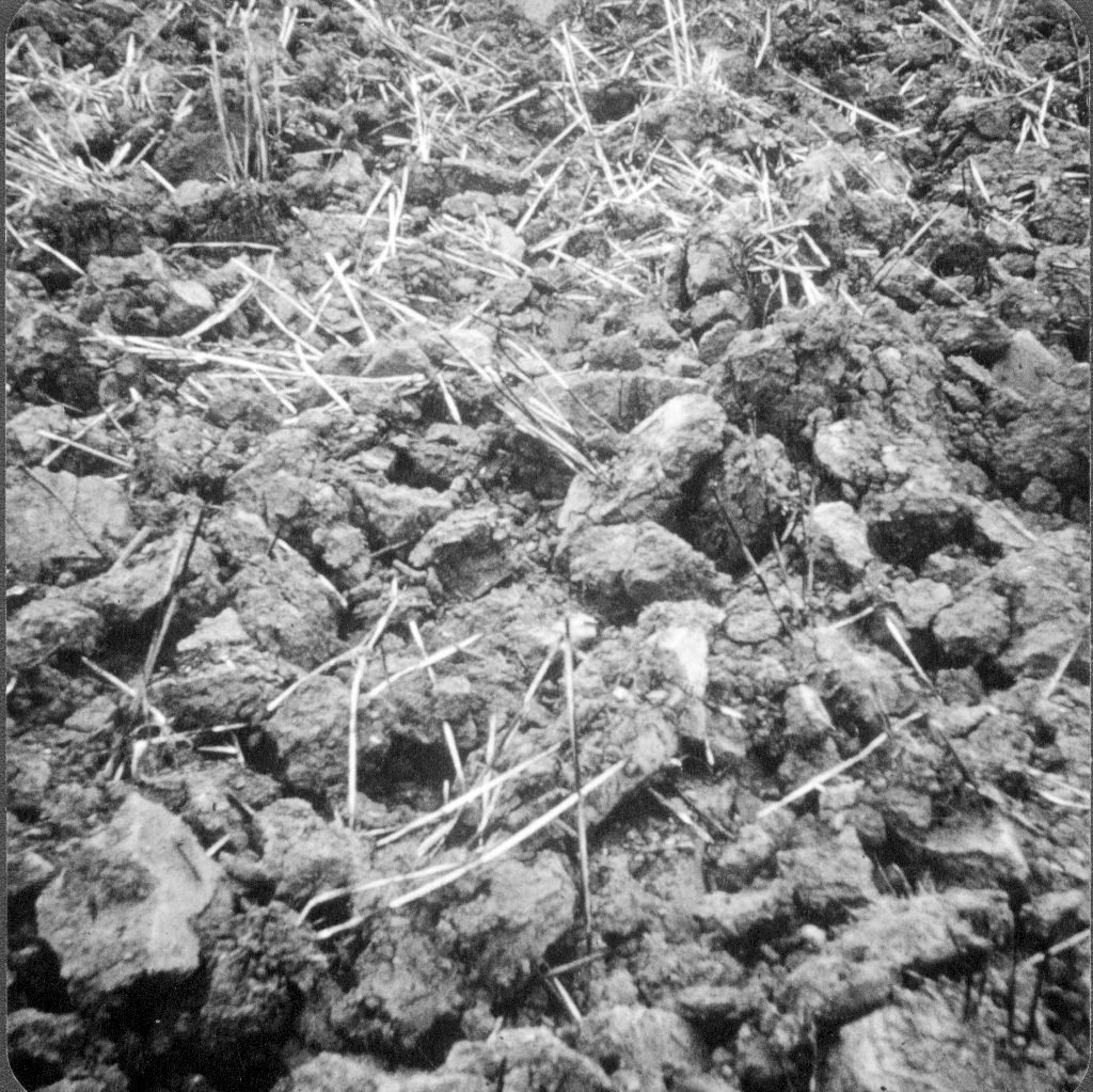 clods of soil