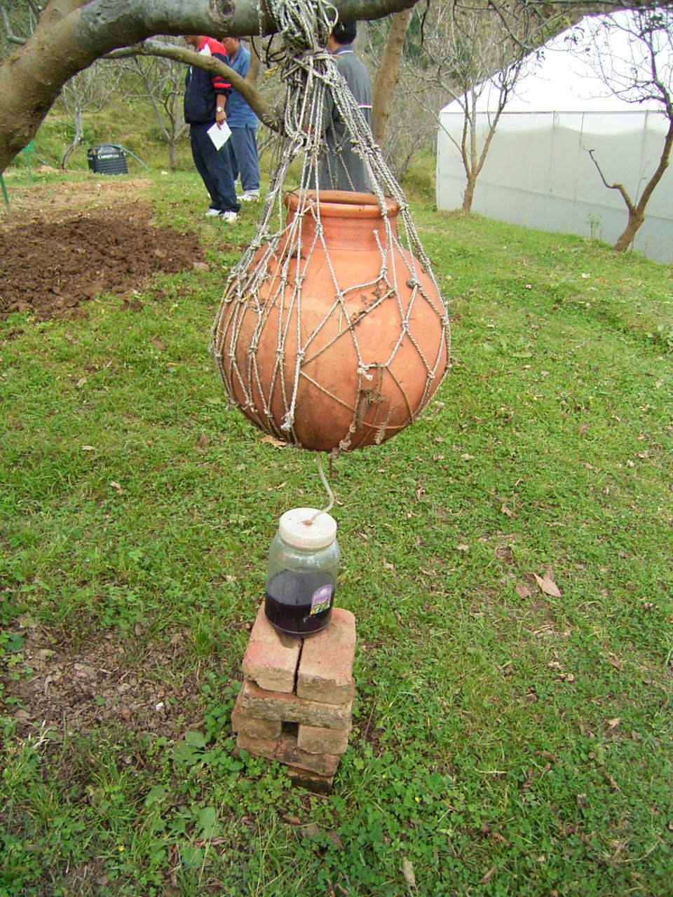 Homemade Fertilizers   EcoFarming Daily
